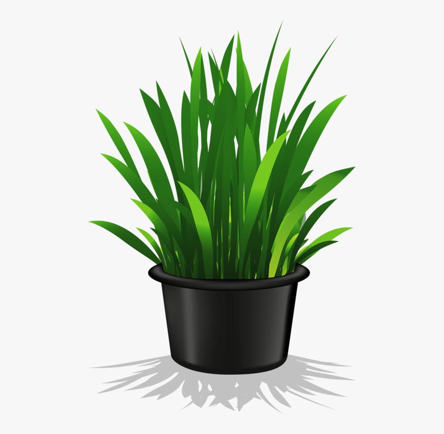 Flower Pot - Transparent Background Potted Plant Png, Transparent Clipart