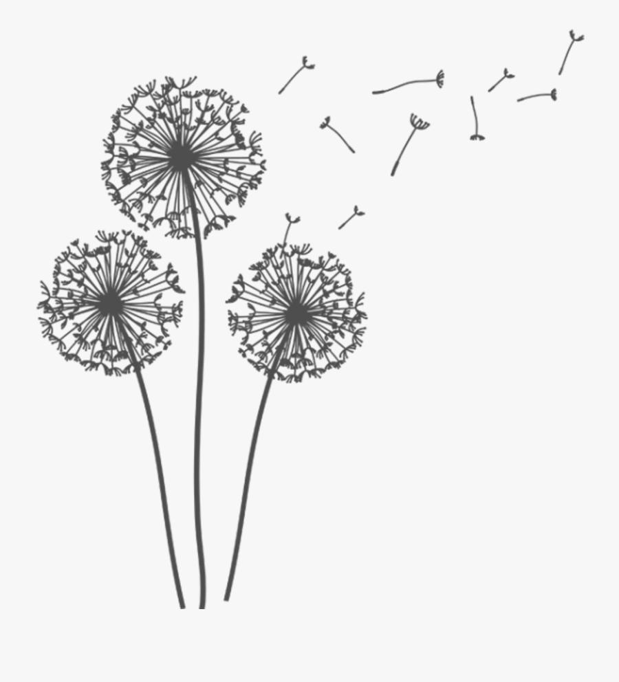 Clip Art Transparent Background Dandelion, Transparent Clipart