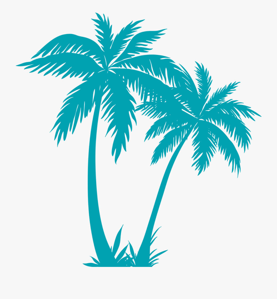 Transparent Palm Tree Plan Png - Palm Tree Vector Png, Transparent Clipart