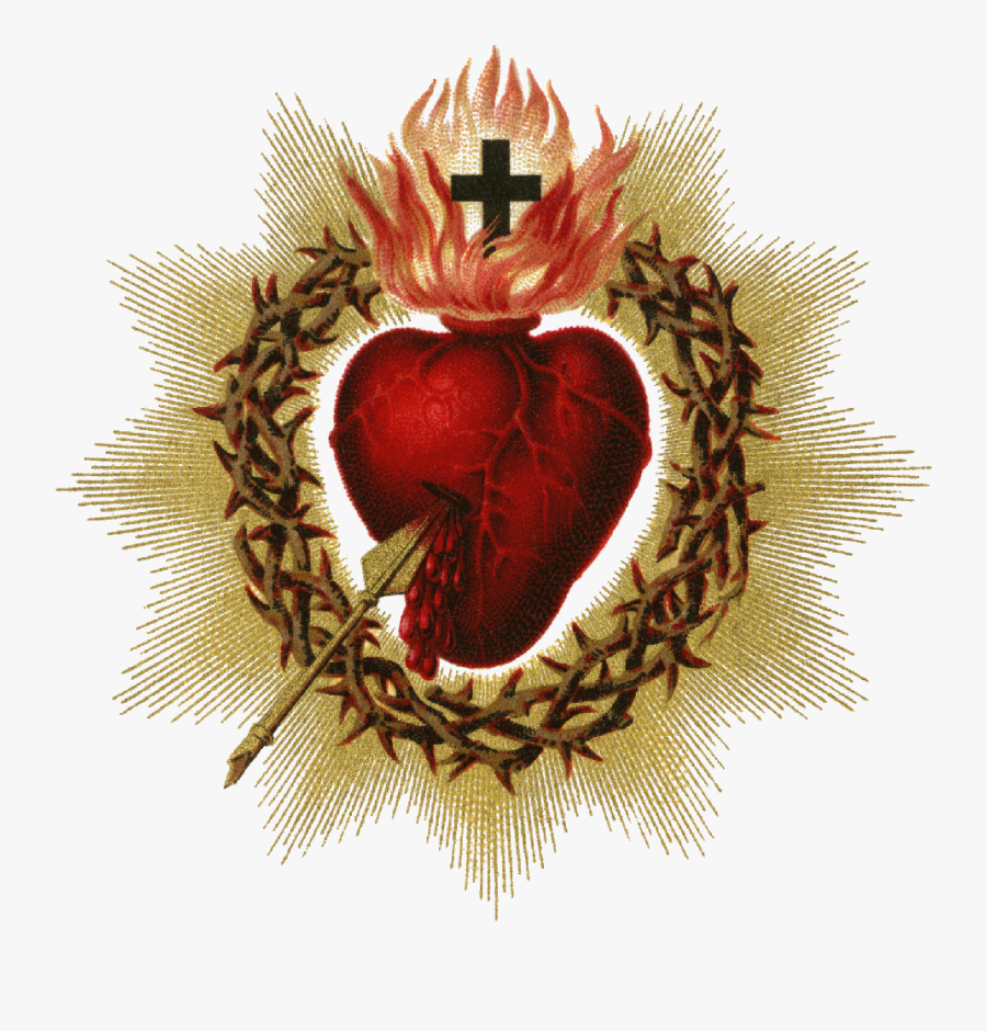 Sacred Heart Pictures - Sacred Heart Of Jesus Png , Free Transparent Clipart - ClipartKey