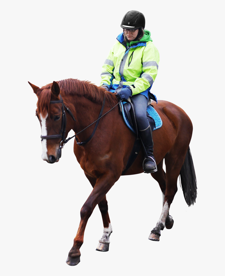 Horse Riding Png Image - Horse Riding No Background, Transparent Clipart