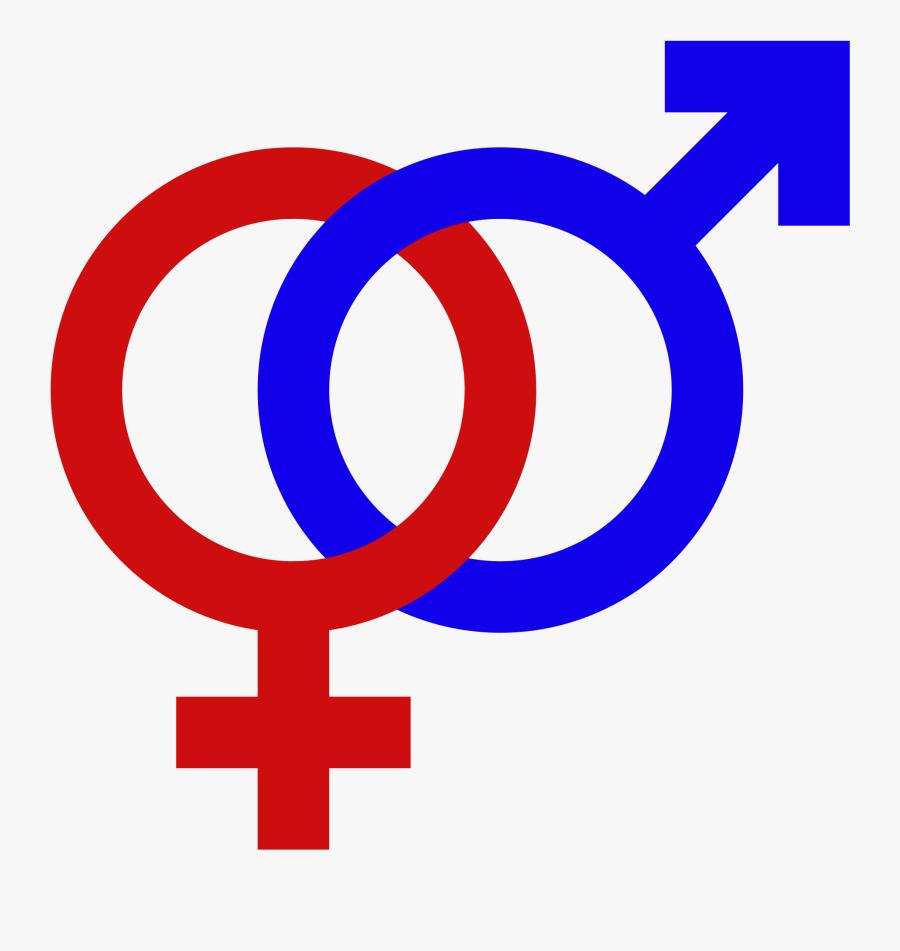 Male Female Gender Signs Gender Symbol Set Male Female - Male And Female Symbol Png, Transparent Clipart