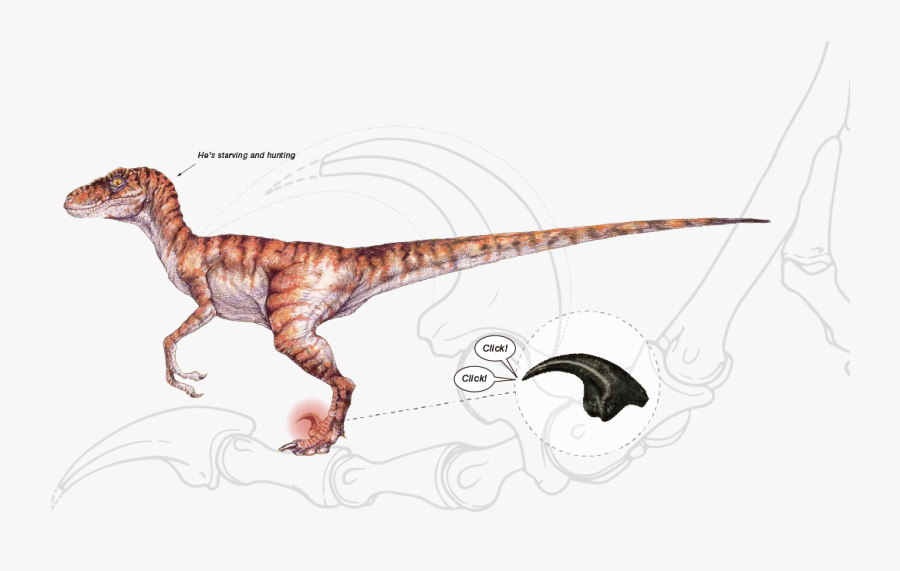 Velociraptor Jurassic Park Concept Art, Transparent Clipart