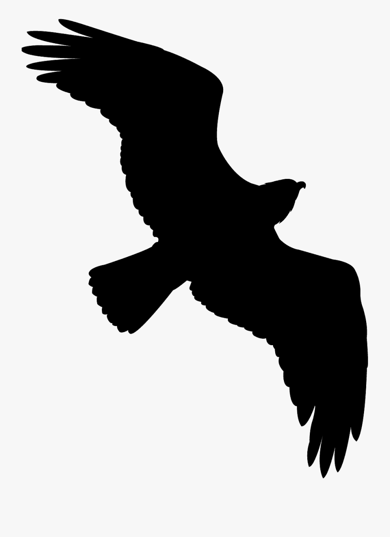 Green Bird Silhouette Flying, Transparent Clipart