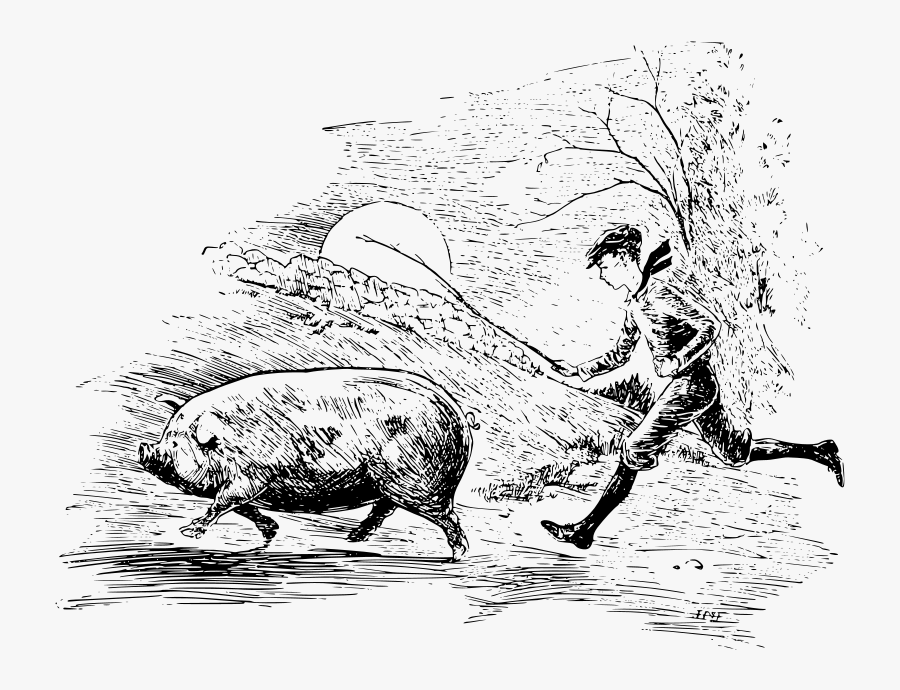 Download A Boy Running Behind A Pig With A Stick - Pig Drawing Running, Transparent Clipart