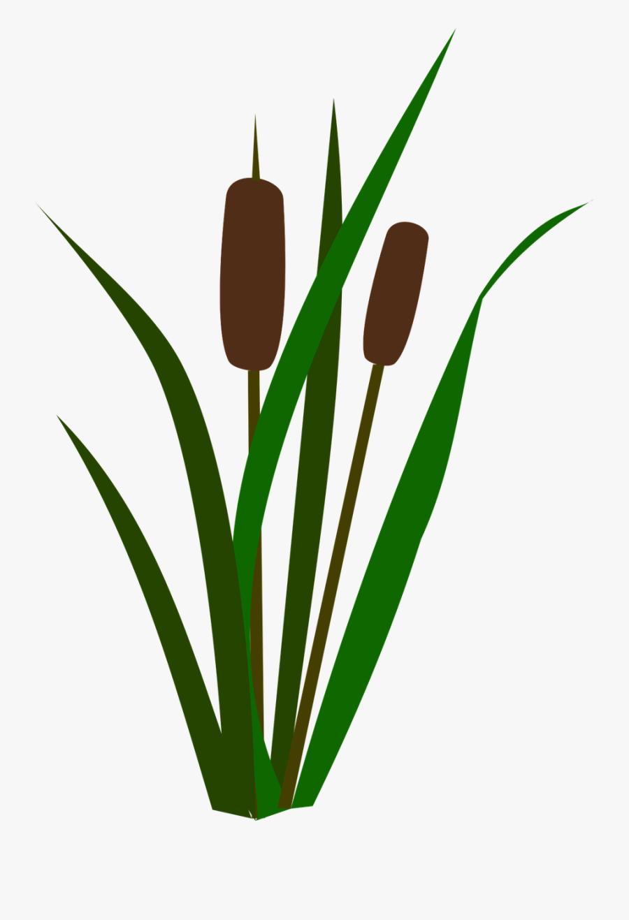 Image result for cattails clipart | Mobile app design, Branding design  logo, Clip art