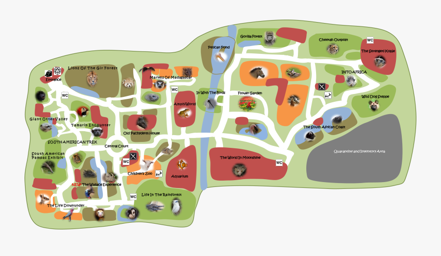 Drawn Map Zoo - Draw A Zoo Map, Transparent Clipart