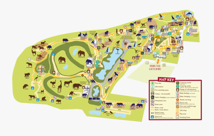 Colchester Zoo Map Zoo Map - Colchester Zoo Map, Transparent Clipart