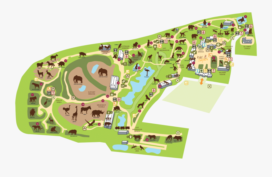 Colchester Zoo Map Zoo Map Colchester Zoo - Colchester Zoo Map 2017, Transparent Clipart