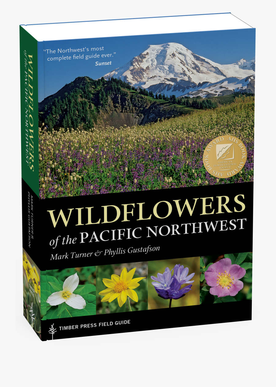 Transparent Wildflower Png - Wildflowers Of The Pacific Northwest, Transparent Clipart