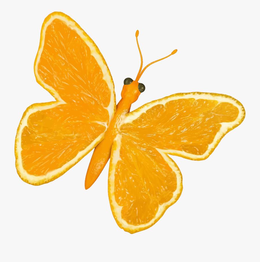 Butterfly,mandarin Orange,vegetarian Food - Cartoon Yellow Butterfly Png, Transparent Clipart