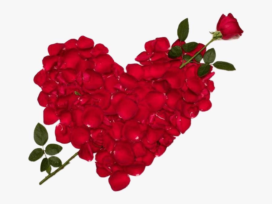 Transparent Rose Heart Clipart - Love Rose Flower, Transparent Clipart