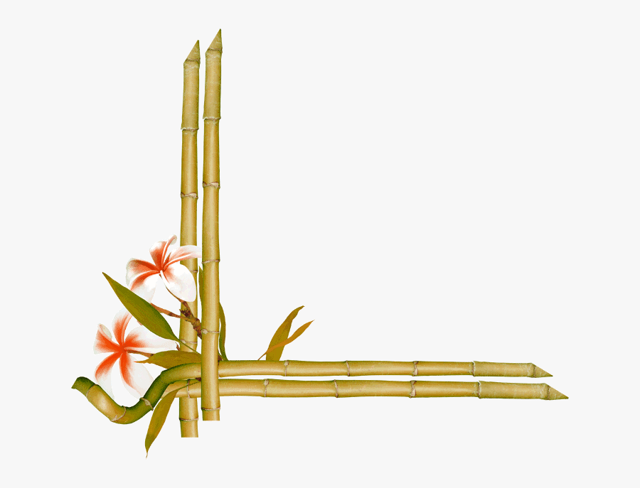 Transparent Bamboo Frame Clipart - Bamboo Frame Border Design, Transparent Clipart