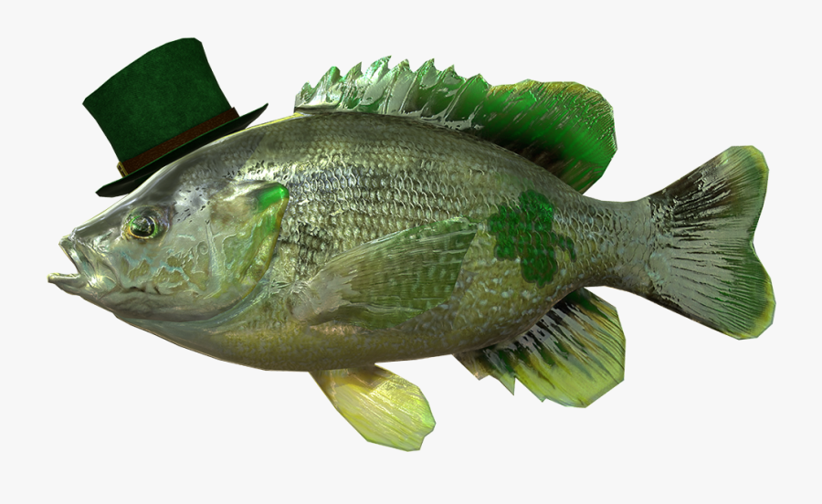 Sunfish Drawing Largemouth - St Patty's Day Fish, Transparent Clipart