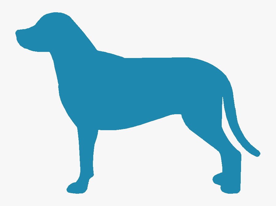 Greater Swiss Mountain Dog Silhouette - Ancient Dog Breeds, Transparent Clipart