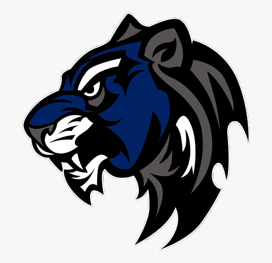 Wildcat Mascot, Transparent Clipart