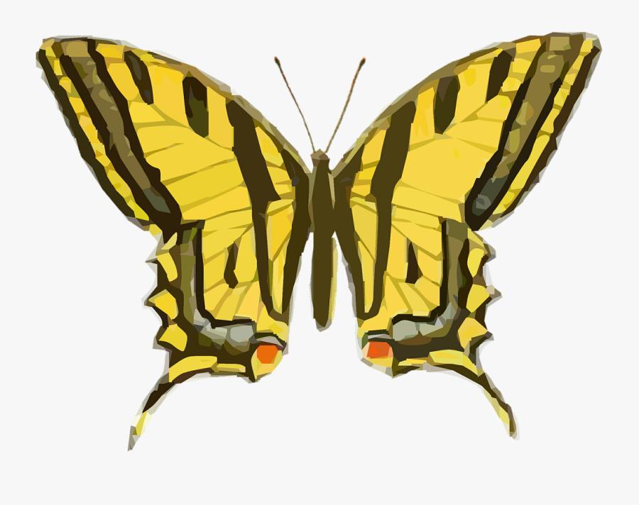Vintage Butterfly Illustration Png, Transparent Clipart