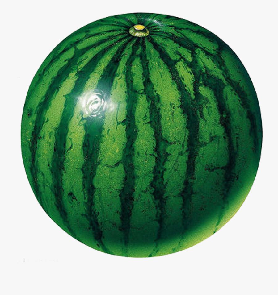 Circle Shape Fruit Clip Art - Green Colour Fruits And Vegetables, Transparent Clipart
