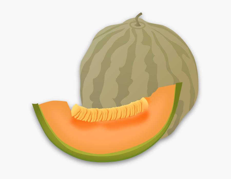 Gourd Order,food,winter Squash - Honey Dew Clip Art, Transparent Clipart