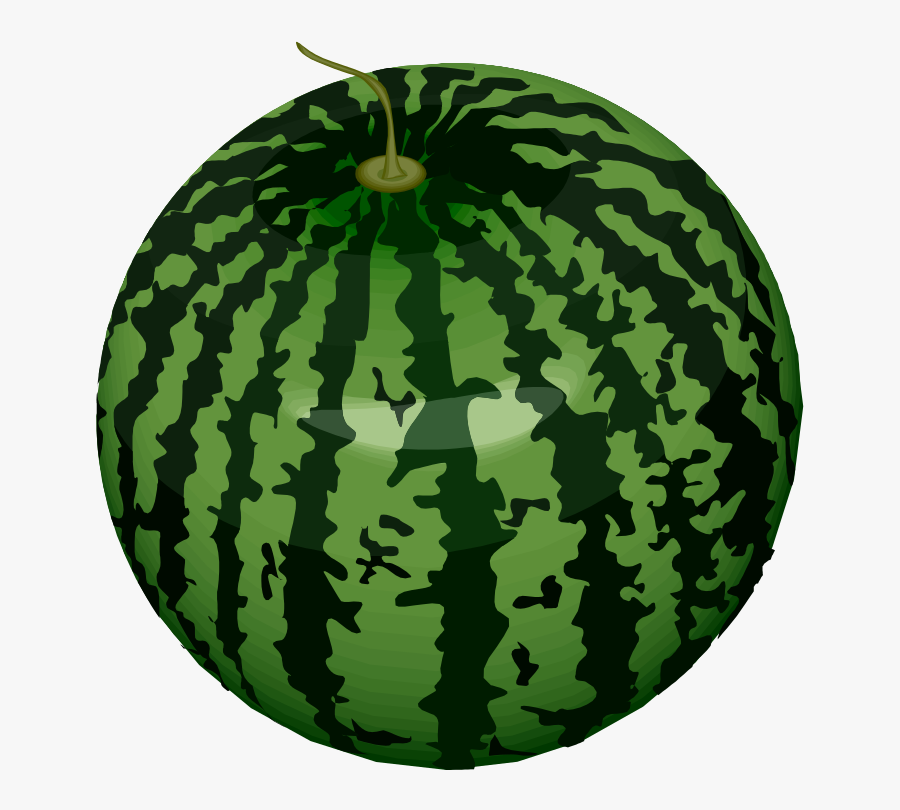 Watermelon - Draw Green Fruits And Vegetables, Transparent Clipart