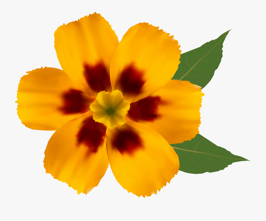 Flower Png Clipart Image - Colorful Flower Design Drawing, Transparent Clipart