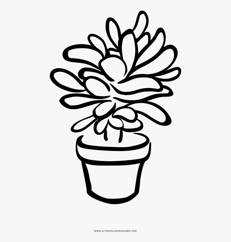 Succulent Coloring Page - Free Printable Succulent Coloring Pages, Transparent Clipart