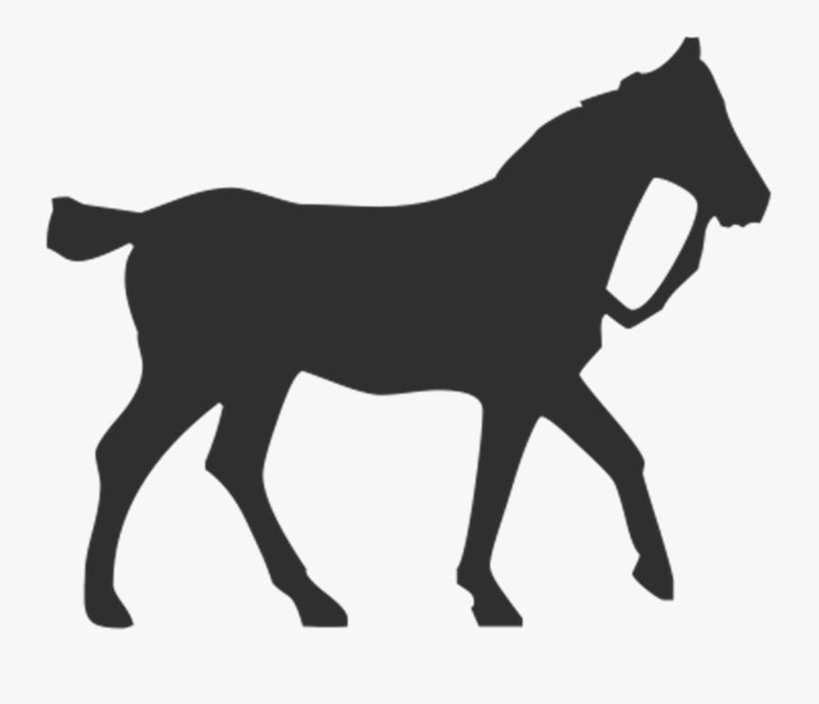 Horse Gallop Equestrian Free Picture - Horse, Transparent Clipart