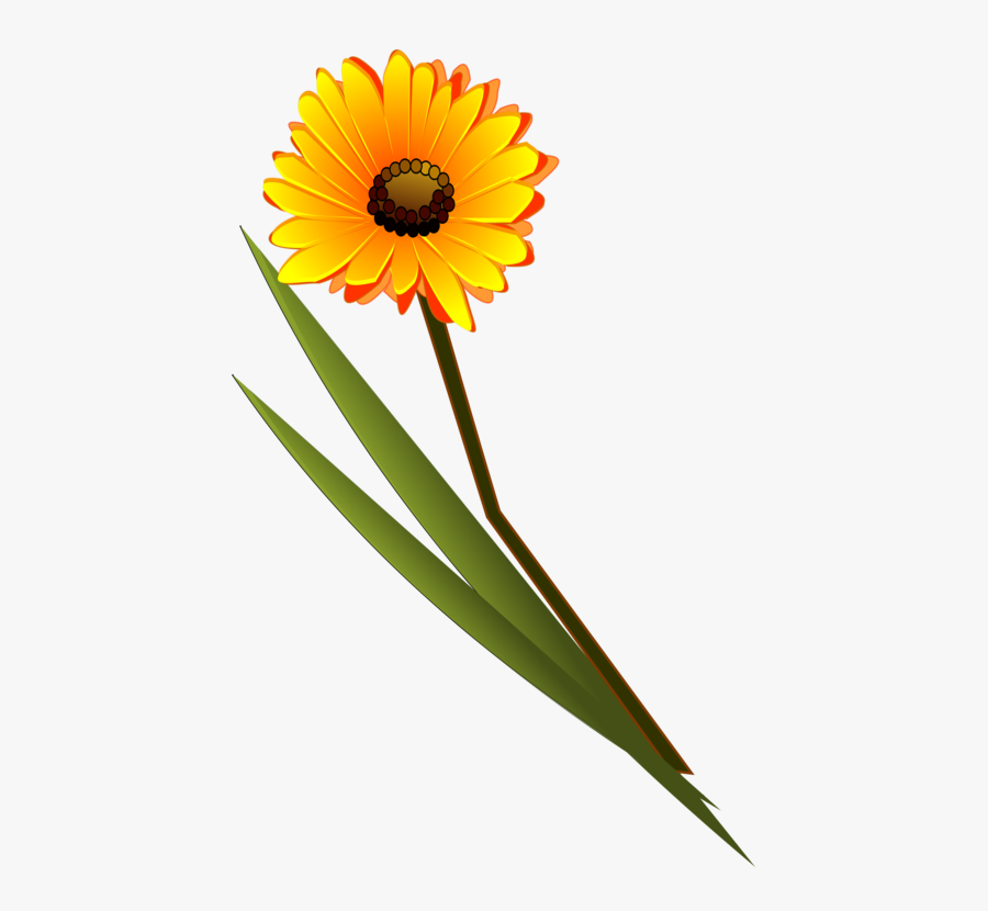 Transparent Daisy Flower Clipart - Single Flower Image For Thank You, Transparent Clipart