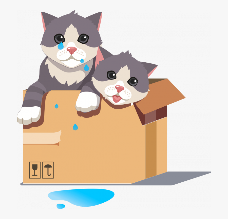 Unsubscribe - Domestic Short-haired Cat, Transparent Clipart