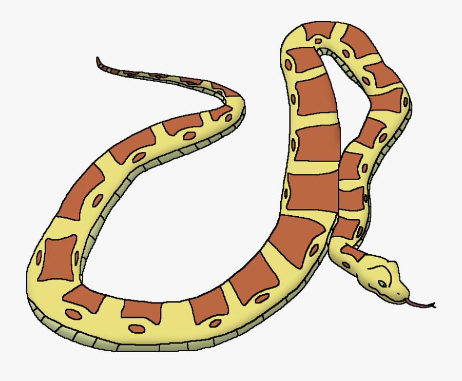 Wildlife Animal Pedia Wiki - Reticulated Python Cartoon, Transparent Clipart