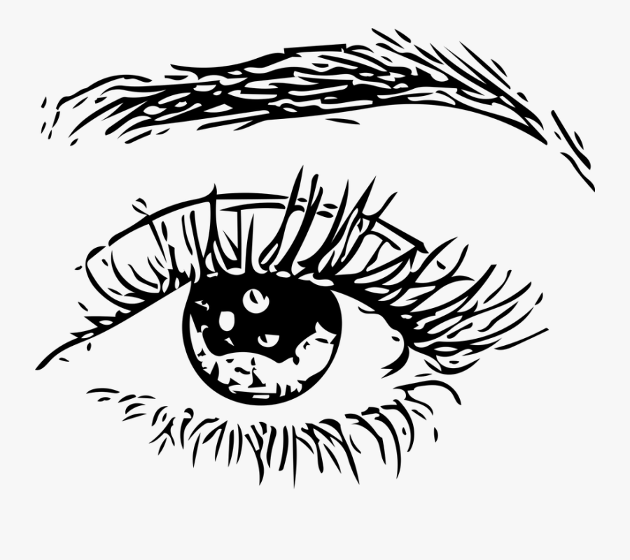 Eye, Eye Ball, Eyebrows, Human, Man, Woman, Eyes - Man Eyes Png, Transparent Clipart