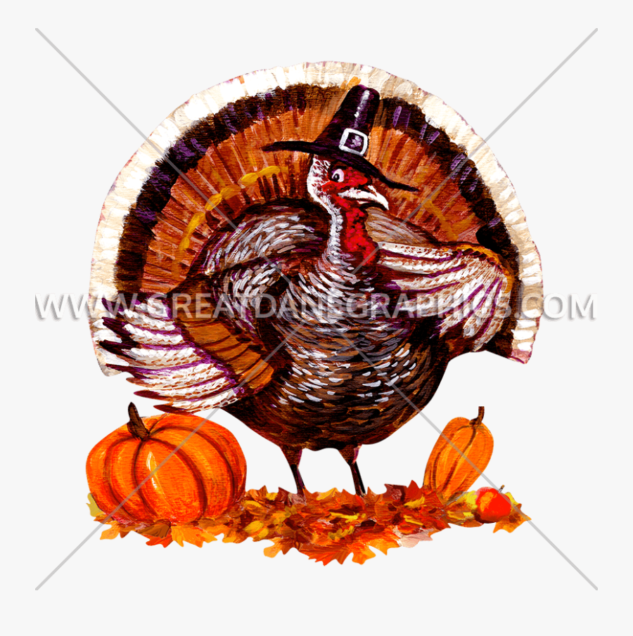Fat Turkey Production Ready - Wild Turkey, Transparent Clipart