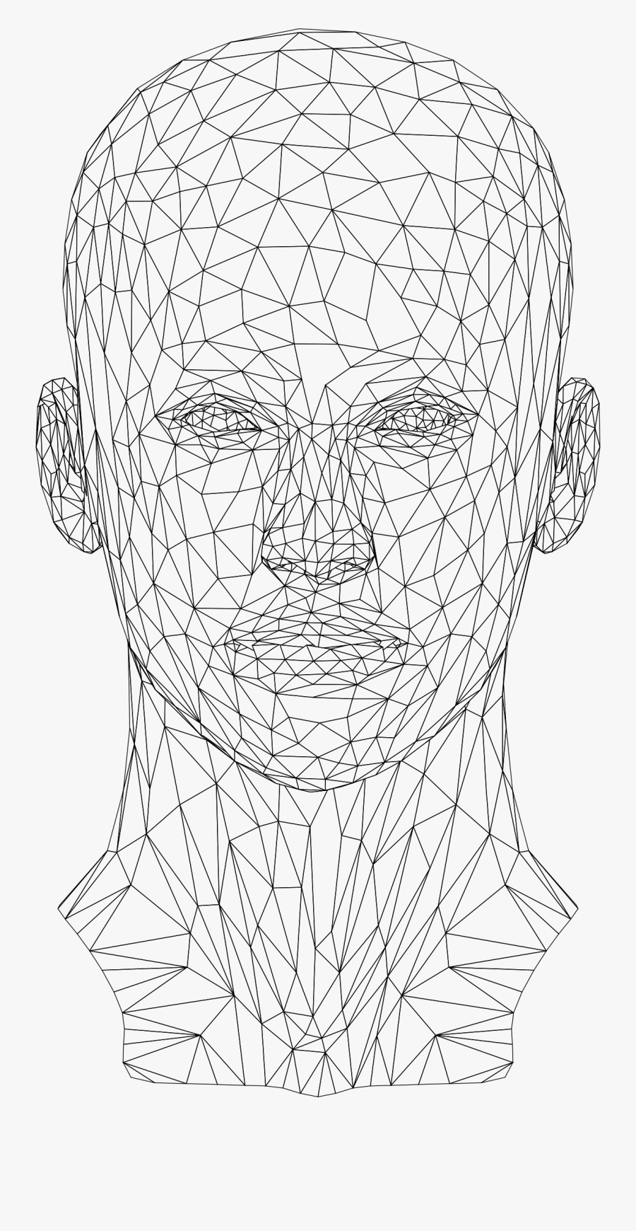 Low Poly Female Head - Wireframe Human Head Png, Transparent Clipart