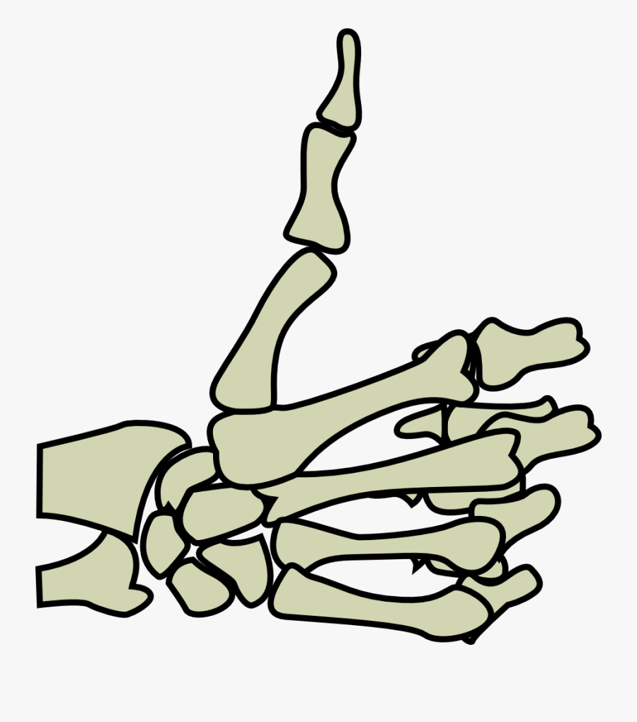 You Need To Login To View This Link Hopefully This - Skeleton Thumbs Up Transparent, Transparent Clipart