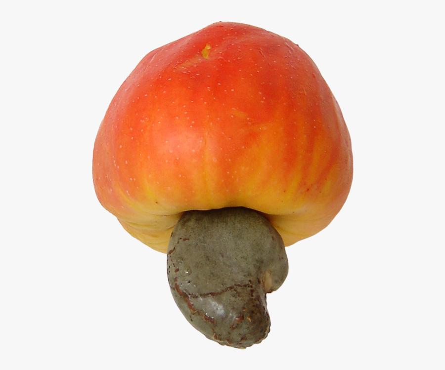 Cashew Fruit Transparent, Transparent Clipart