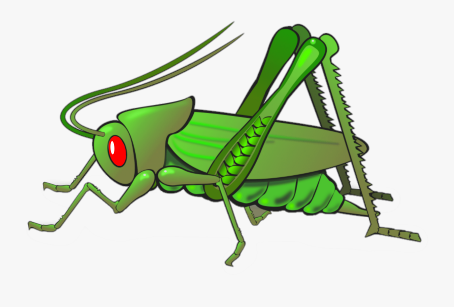 #belalang - Insect Cricket Clipart, Transparent Clipart