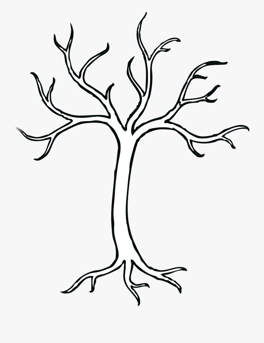 Tree With 5 Branches, Transparent Clipart