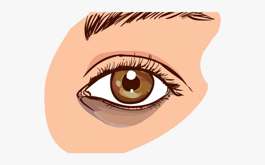 Brown Eyes Clipart Two Eye - Dark Circles Under Eyes Causes, Transparent Clipart