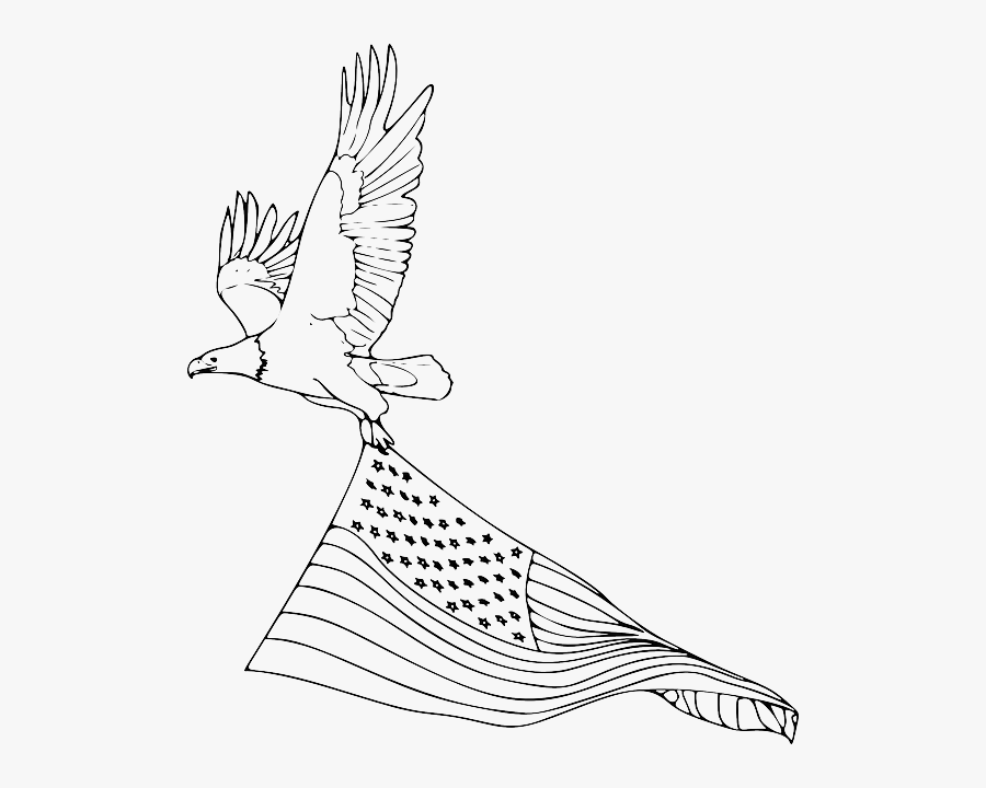 At Getdrawings Com Free For Personal Use - Easy Drawing Of A Bald Eagle, Transparent Clipart