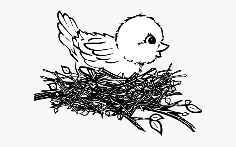 76 best Birds nest images on Pinterest | Cats, People art