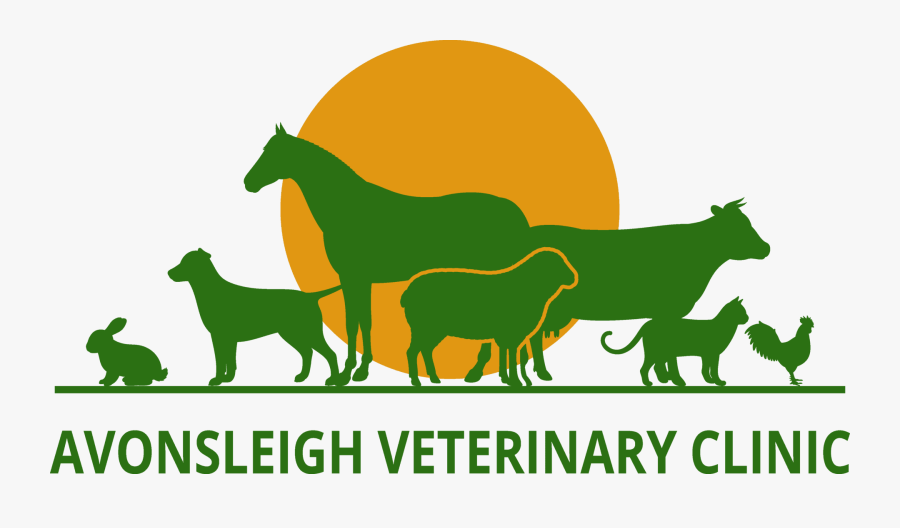 We Love Them Like They Love You - Farm Vet Logo, Transparent Clipart