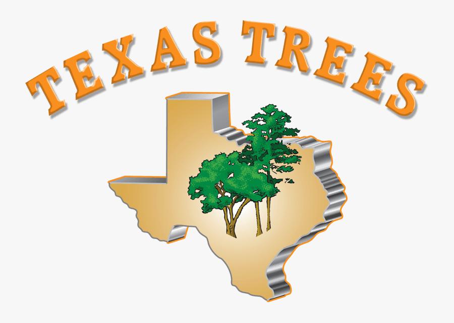 Texas Trees Tree Service - Illustration, Transparent Clipart
