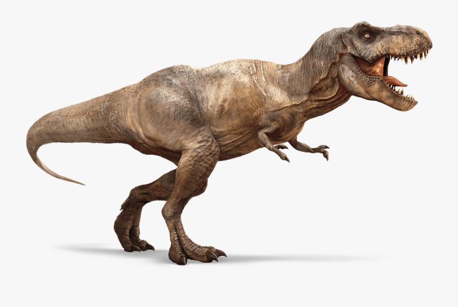 Running T-rex - T Rex, Transparent Clipart