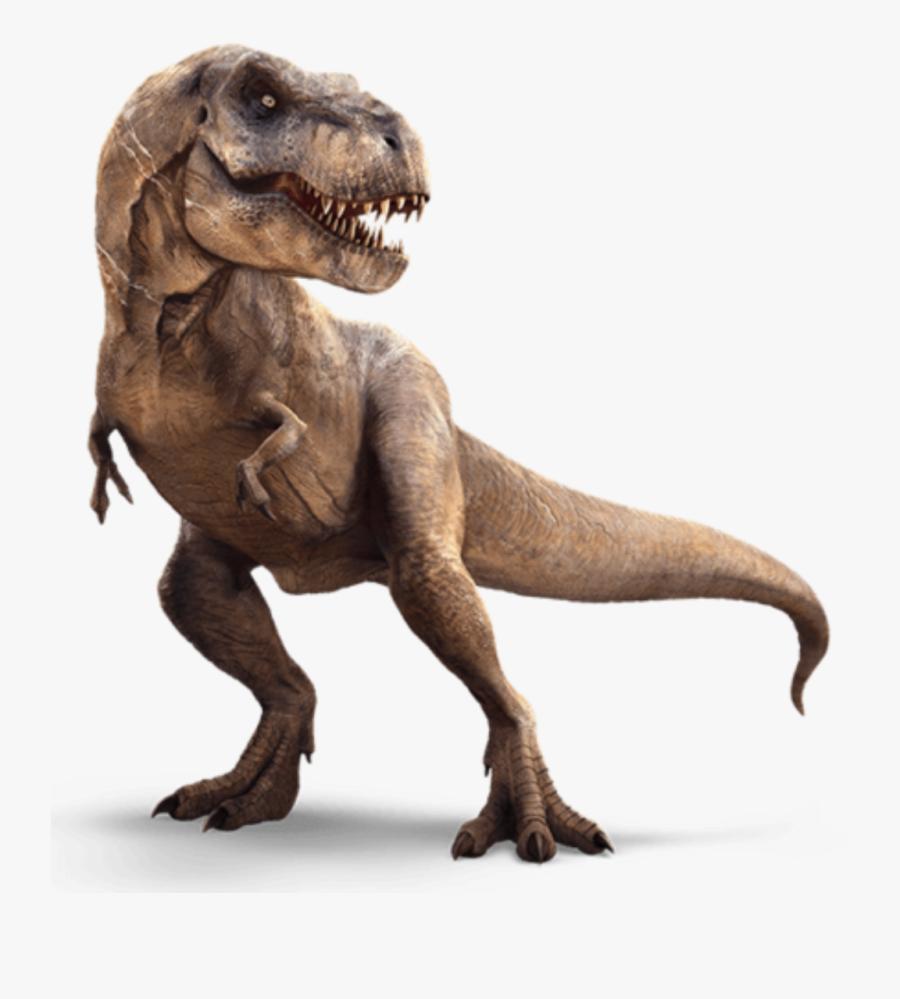 Transparent Tyrannosaurus Rex Png - T Rex Transparent Background, Transparent Clipart