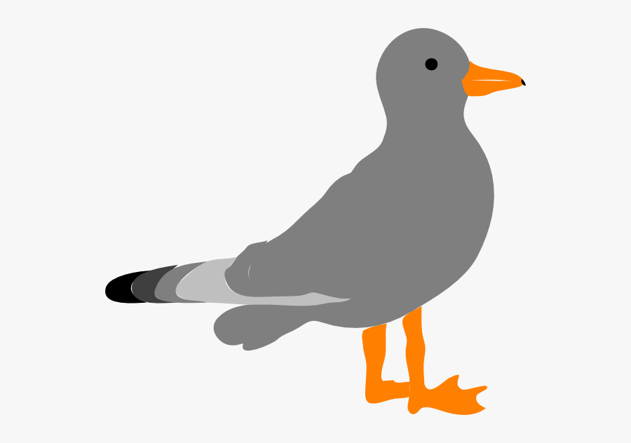 Cartoon Picture Of Seagull Cl - Seagulls Cartoon Images Flying, Transparent Clipart