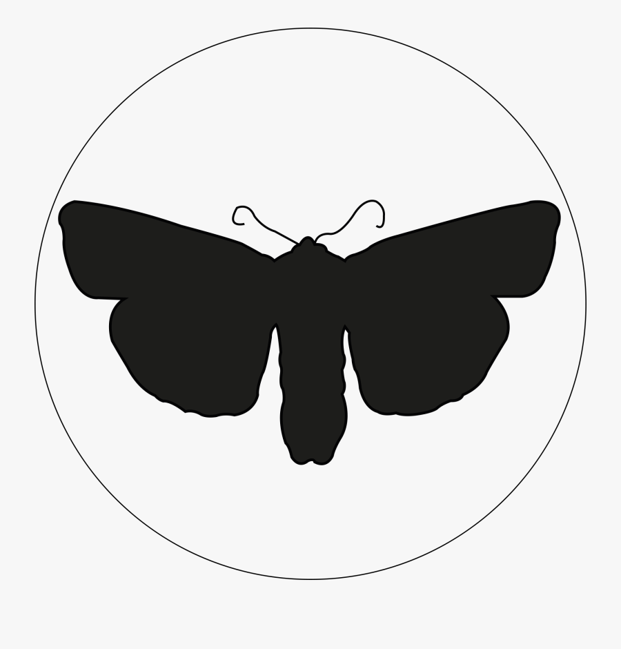 - Photography Clipart , Png Download - Brush-footed Butterfly, Transparent Clipart