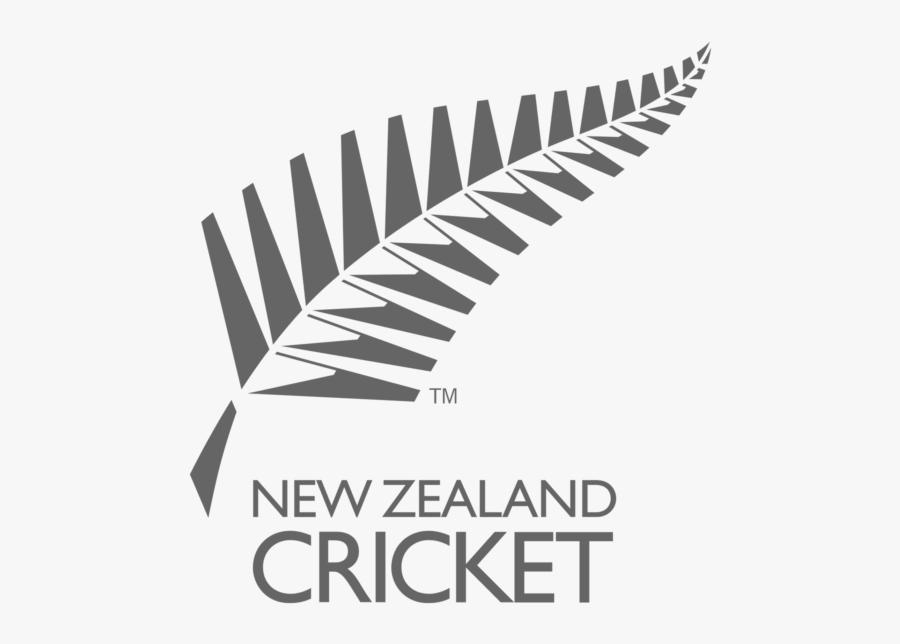 New Zealand Cricket Team Logo Png Free Download Searchpng - New Zealand Team Logo, Transparent Clipart