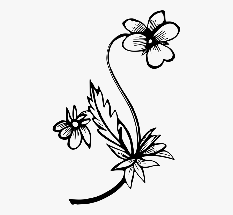Transparent Free Clipart Of Flowers And Butterflies - Flower And Butterfly Drawing, Transparent Clipart