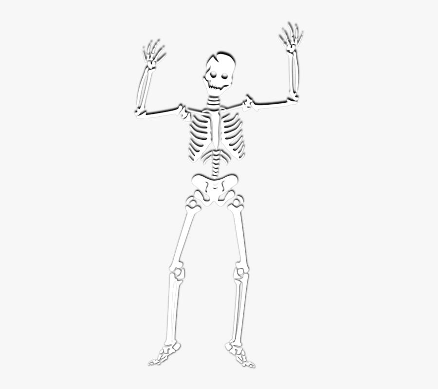 Skeleton Png Spooky, Transparent Clipart