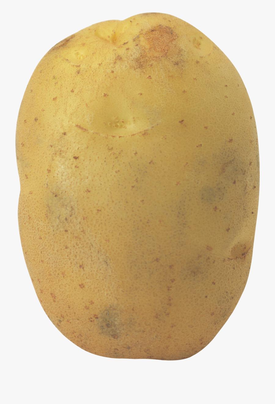Transparent Potato White Background, Transparent Clipart